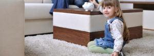 Carpet Spot & Stain Removal Burlington Milton Hamilton Oakville Mississauga