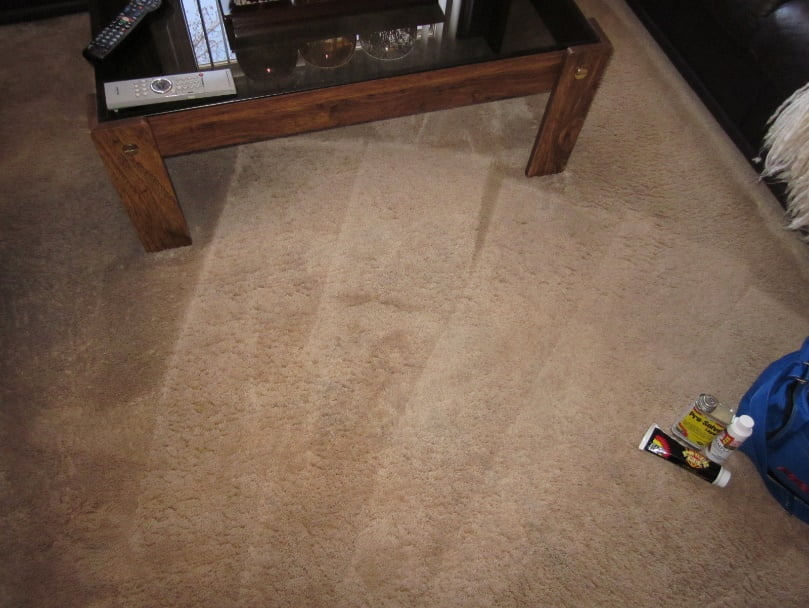 Royal Carpet Cleaning's Stain Removal Techniques!