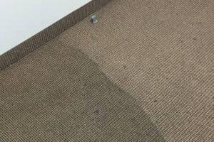 commercial carpet cleaning Mississauga Brampton, Burlington, Milton, Hamilton, Oakville, Mississauga