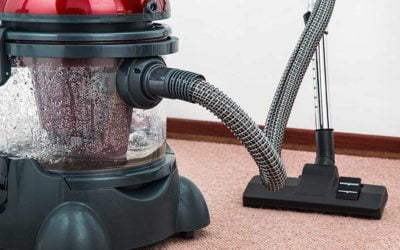 Is Your Carpet Giving You Allergies or Shielding You from Them?